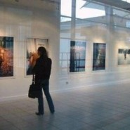 Выставка работ фестиваля стрит-арта Art area 2016 фотографии