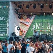 фестиваль МЕГА Пикник фотографии