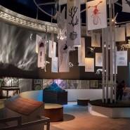 Выставка «Алиса в Стране наук» фотографии