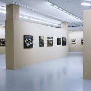 Выставка Александры Железновой. фотографии