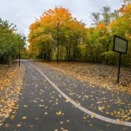 Парк имени Лесоводов Башкирии фотографии