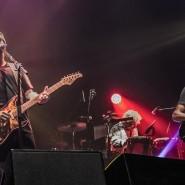 Концерт Dire Straits 2020 фотографии