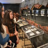 Выставка «И помнить страшно, и забыть нельзя» фотографии