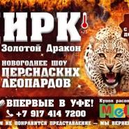 Большой Новосибирский Цирк «Золотой Дракон» фотографии