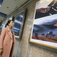 Фотовыставка #СеверныйКавказ_7историй фотографии