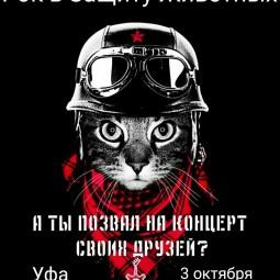 Благотворительный фестиваль - «Рок в защиту животных»