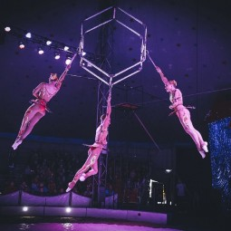 "Цирковое шоу ""EUPHORIA"""