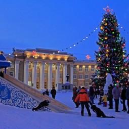 Елки и ледовые городки города