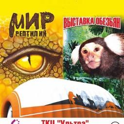 Выставка «Парад обезьян»
