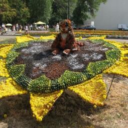 Праздник «День цветов»
