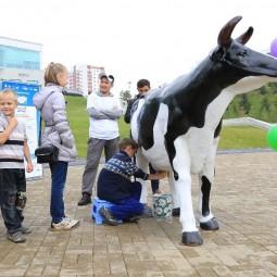 Фестиваль «Молочная страна»