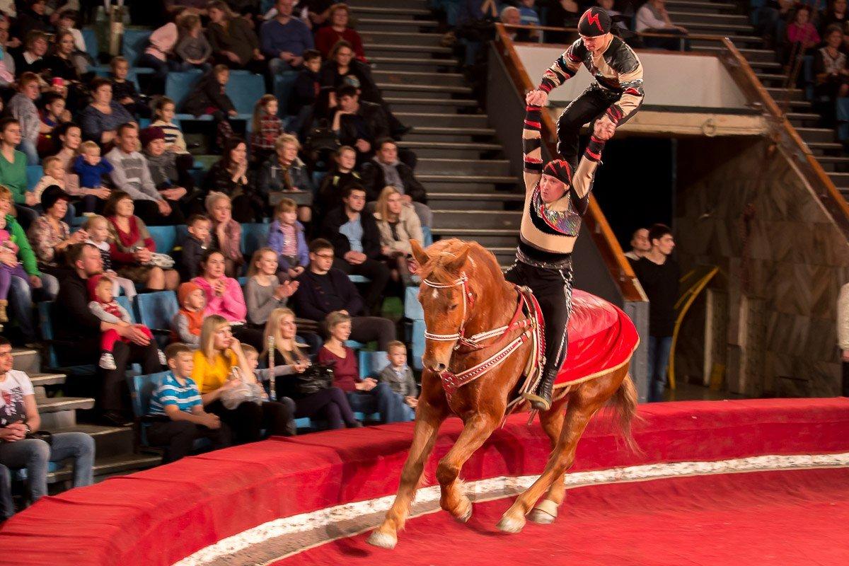 Цирк в уфе время представлений