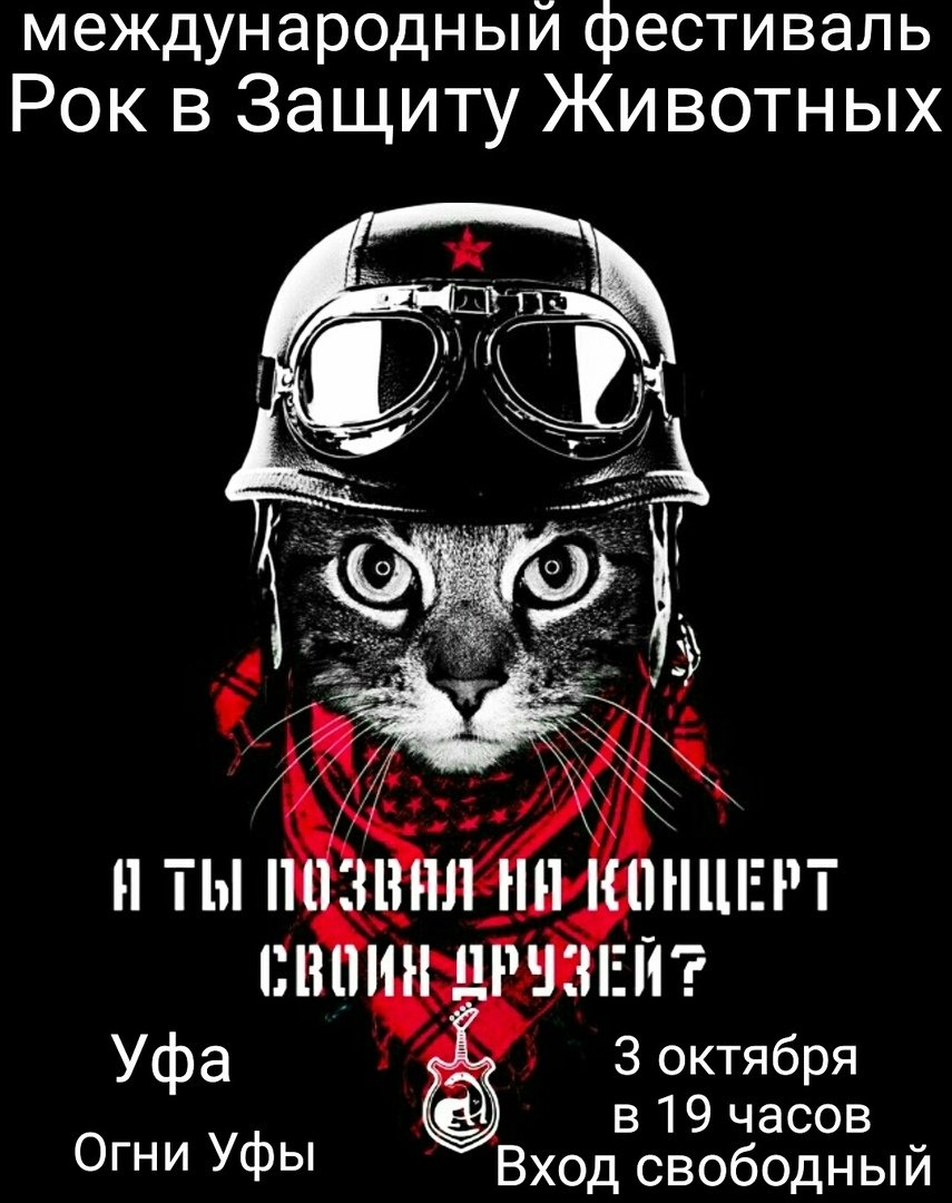 Благотворительный фестиваль— «Рок взащиту животных»