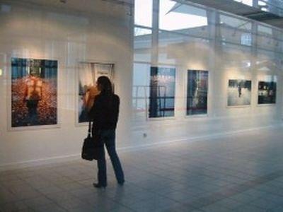 Выставка работ фестиваля стрит-арта Art area 2016