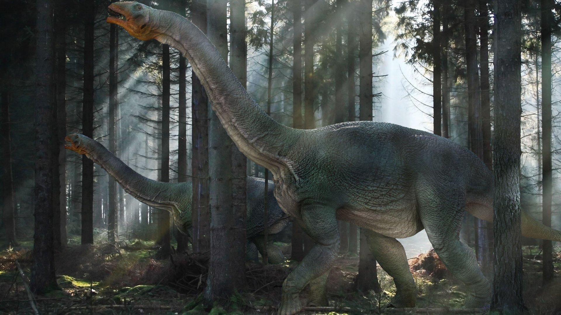 Образовательная программа «Время гигантов: когда динозавры правили Землей»